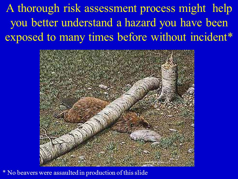 A thorough risk assessment process might help you better understand a hazard you have been exposed to many times before without incident*