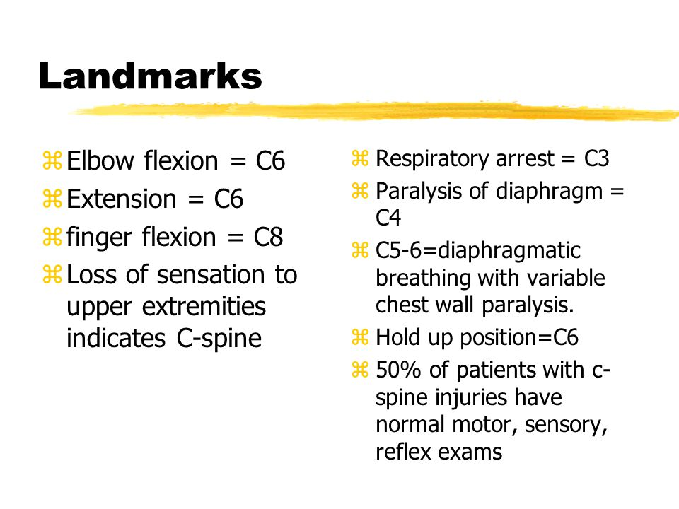 Landmarks Elbow flexion = C6 Extension = C6 finger flexion = C8