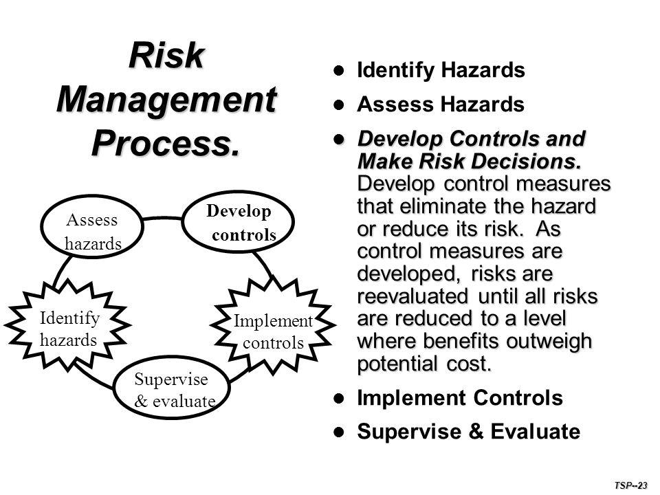 Risk Management Process.
