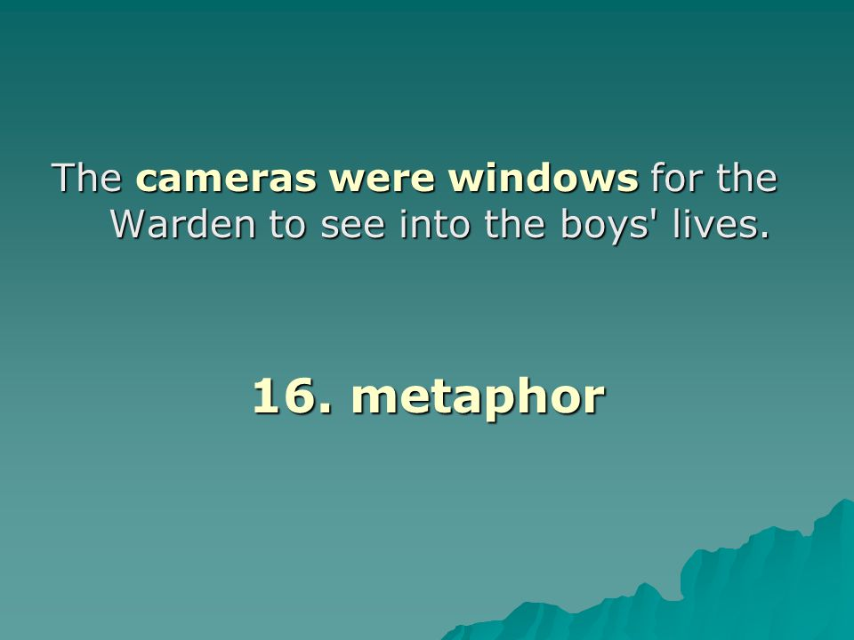 The cameras were windows for the Warden to see into the boys lives.