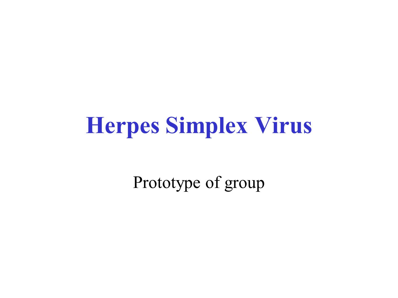 Herpes Simplex Virus Prototype of group