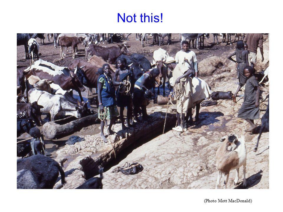Not this! (Photo Mott MacDonald)