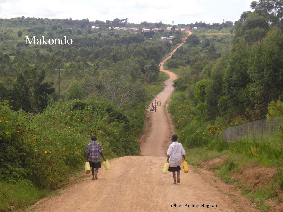 Makondo (Photo Andrew Hughes)