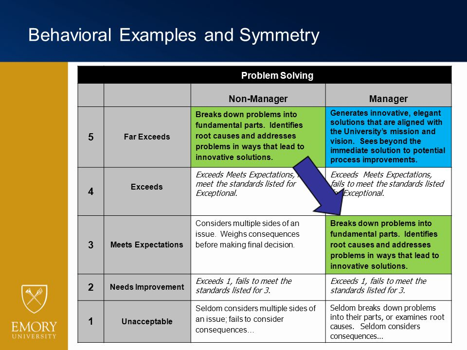 Behavioral Examples and Symmetry