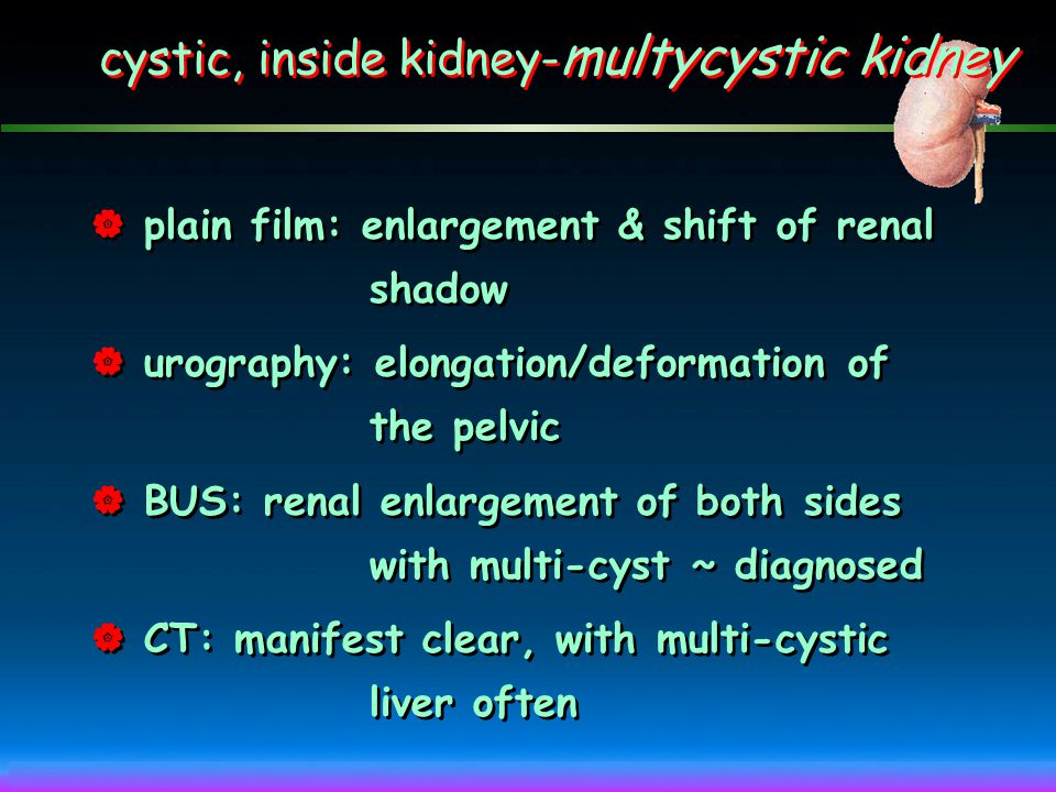 cystic, inside kidney-multycystic kidney