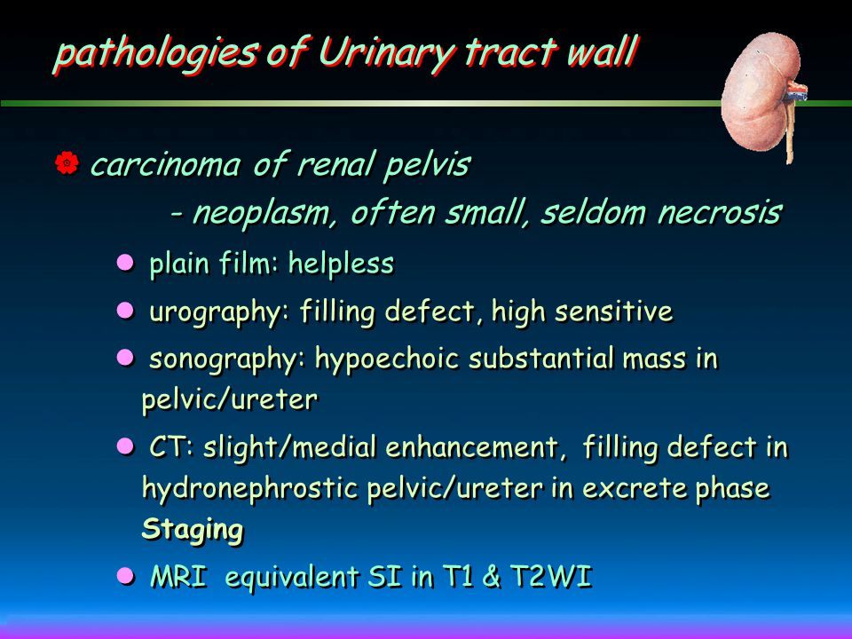 pathologies of Urinary tract wall