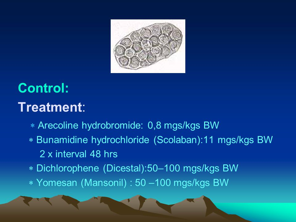 Control: Treatment:  Arecoline hydrobromide: 0,8 mgs/kgs BW