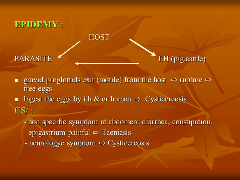 EPIDEMY : HOST CS/ : PARASITE I.H (pig,cattle)