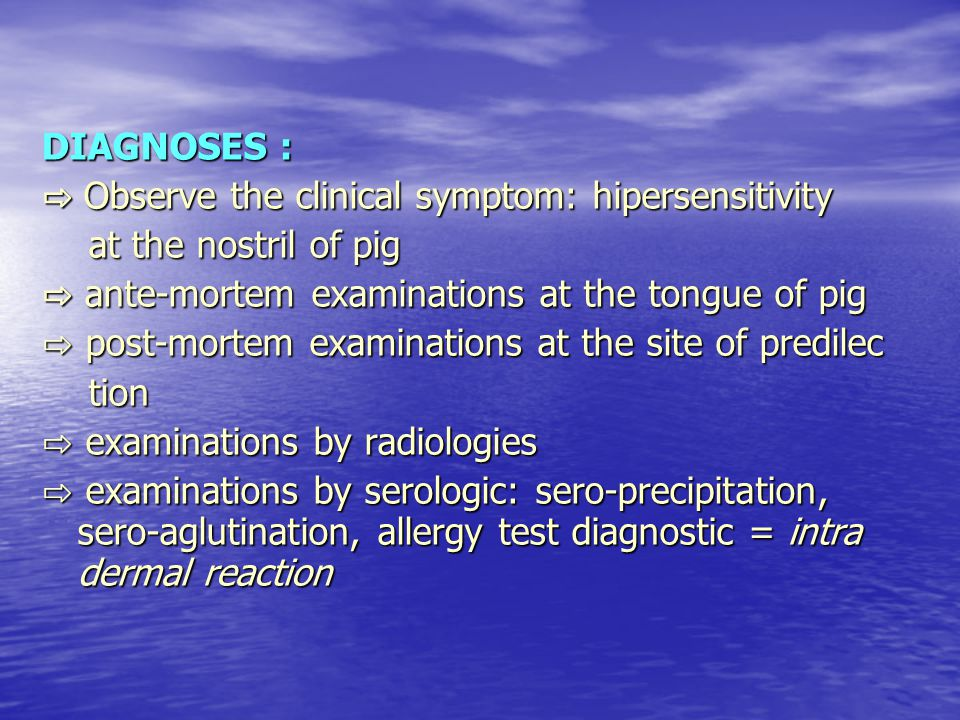 DIAGNOSES : ⇨ Observe the clinical symptom: hipersensitivity. at the nostril of pig. ⇨ ante-mortem examinations at the tongue of pig.