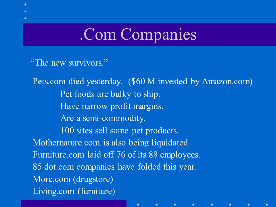 .Com Companies The new survivors.
