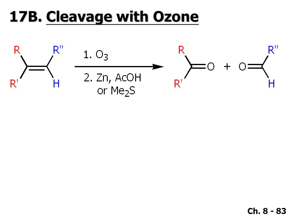 17B. Cleavage with Ozone