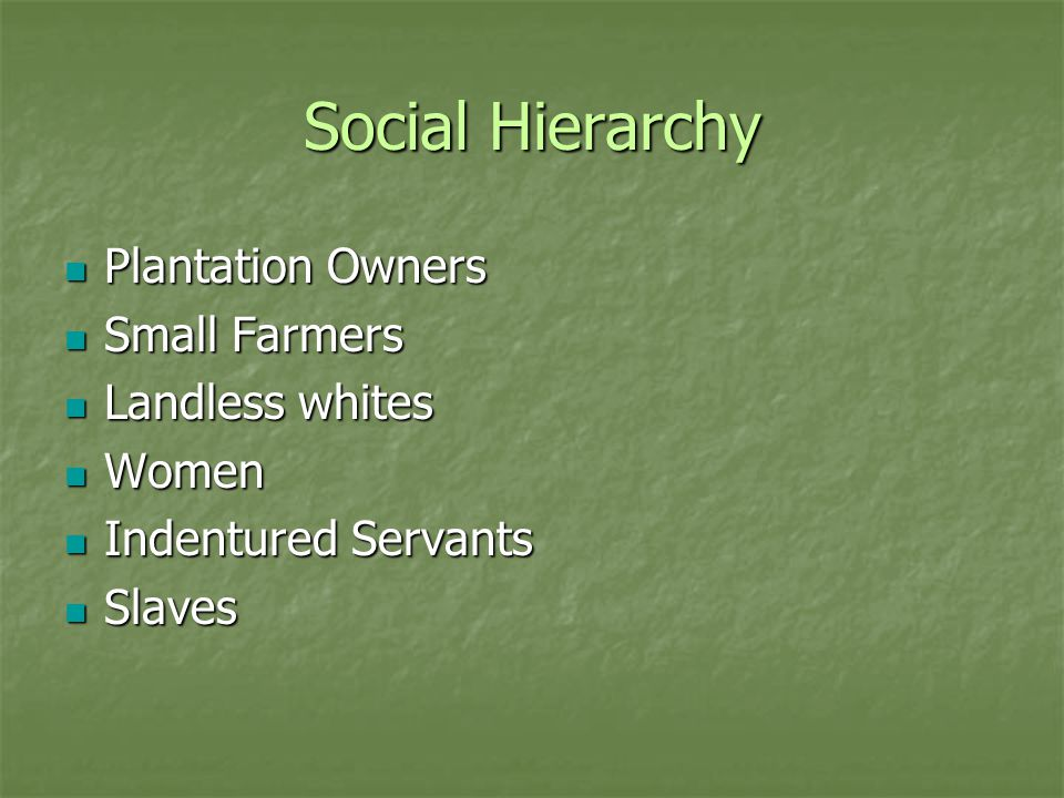 Social Hierarchy Plantation Owners Small Farmers Landless whites Women