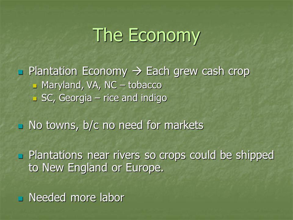 The Economy Plantation Economy  Each grew cash crop