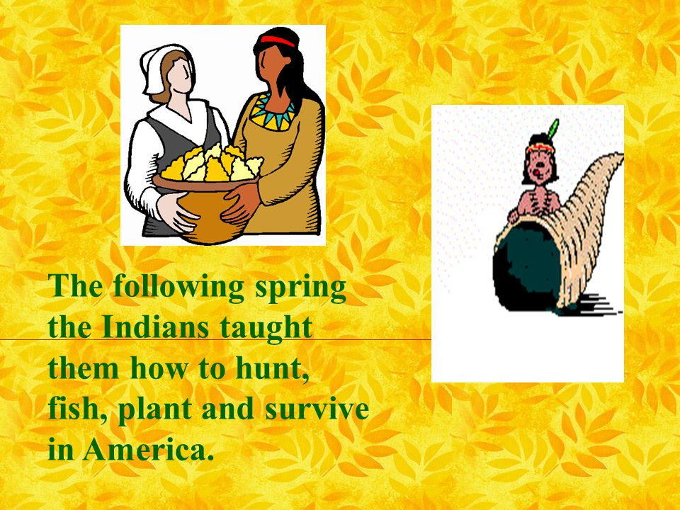 The following spring the Indians taught them how to hunt, fish, plant and survive in America.