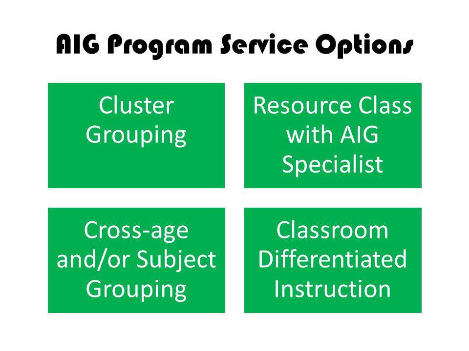 AIG Program Service Options