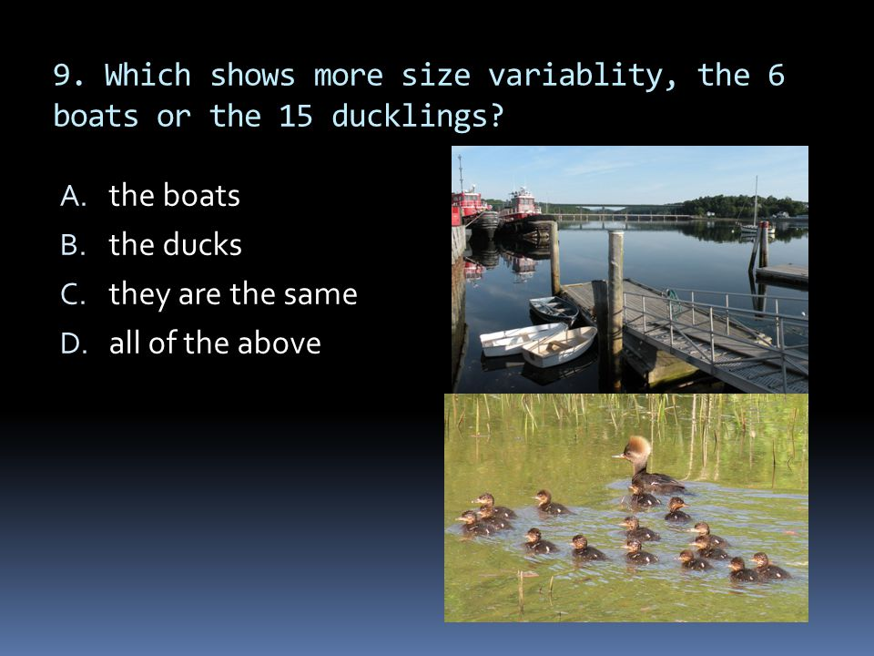 9. Which shows more size variablity, the 6 boats or the 15 ducklings