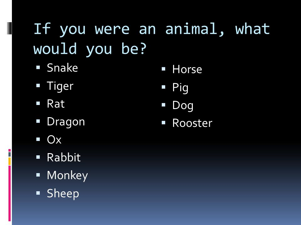 If you were an animal, what would you be
