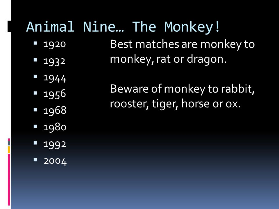 Animal Nine… The Monkey!