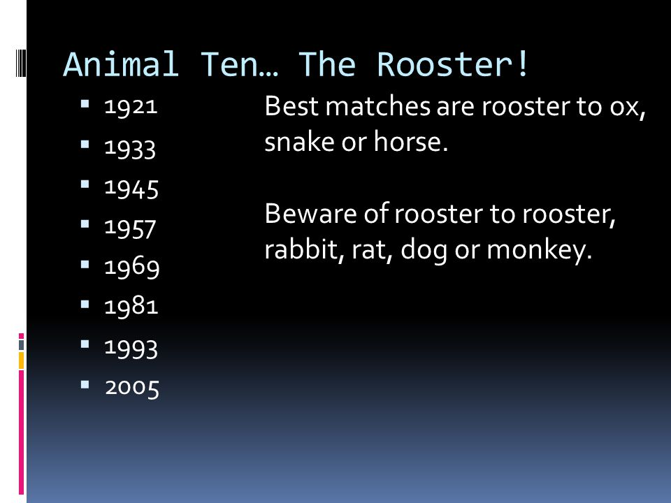 Animal Ten… The Rooster!