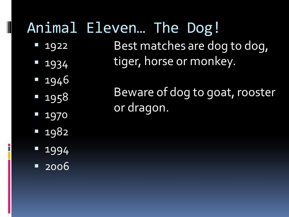 Animal Eleven… The Dog! 1922. 1934. 1946. 1958. 1970. 1982. 1994. 2006. Best matches are dog to dog, tiger, horse or monkey.