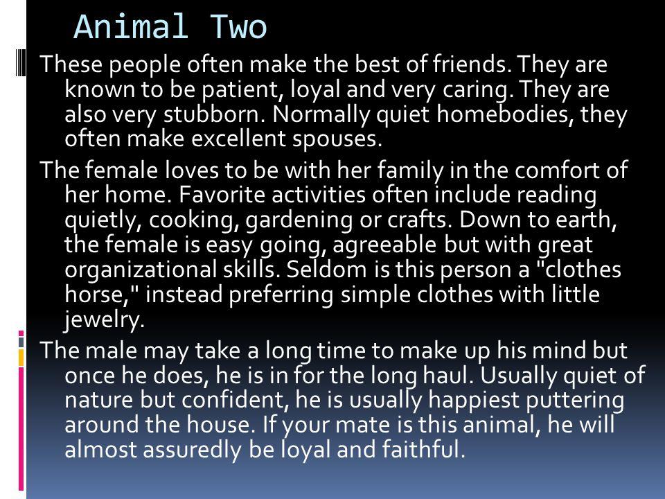 Animal Two