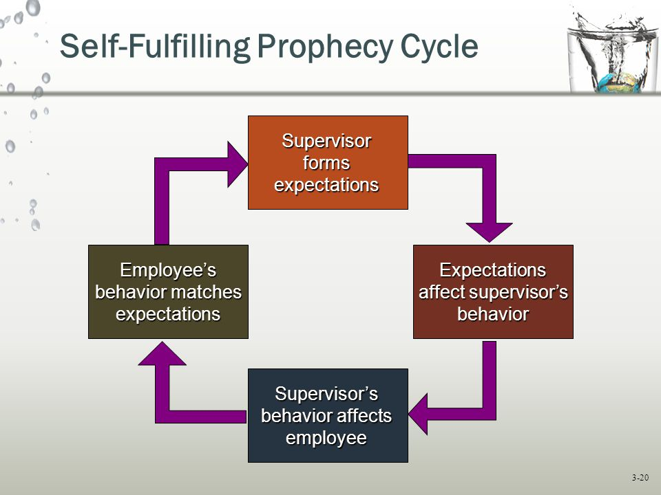 Self-Fulfilling Prophecy Cycle