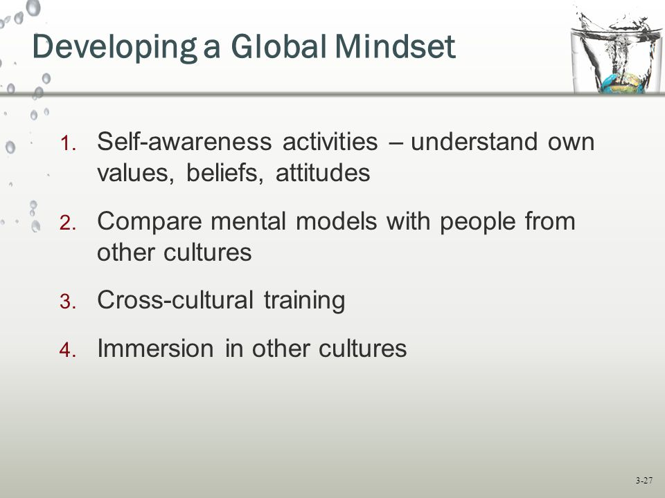 Developing a Global Mindset