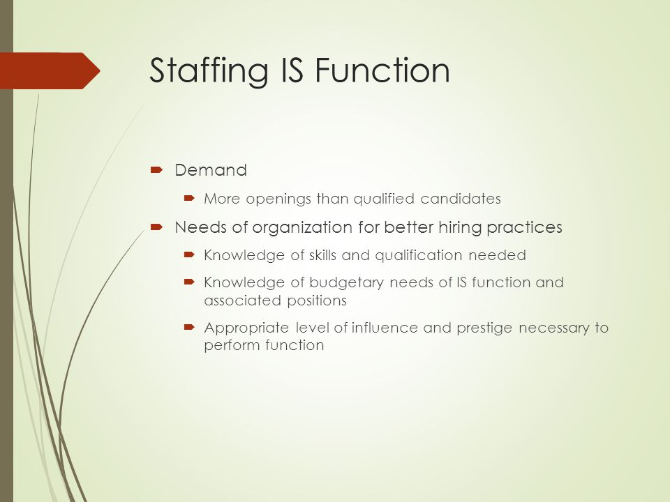 Staffing IS Function Demand