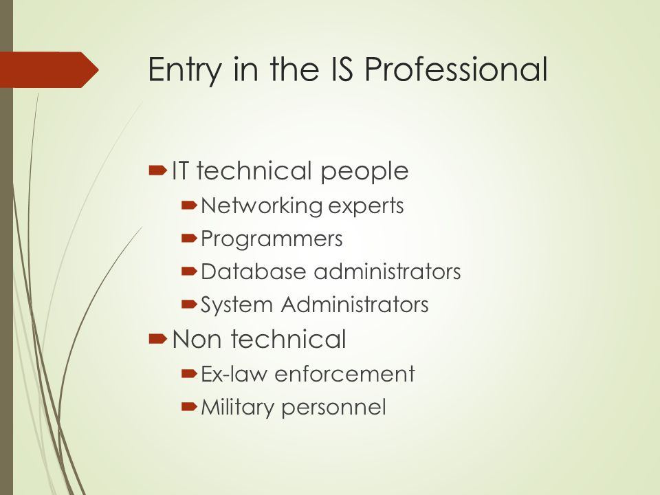 Entry in the IS Professional
