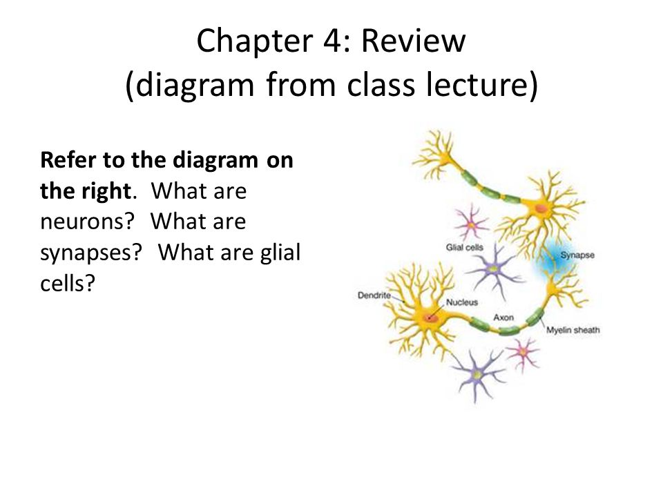 Chapter 4: Review (diagram from class lecture)