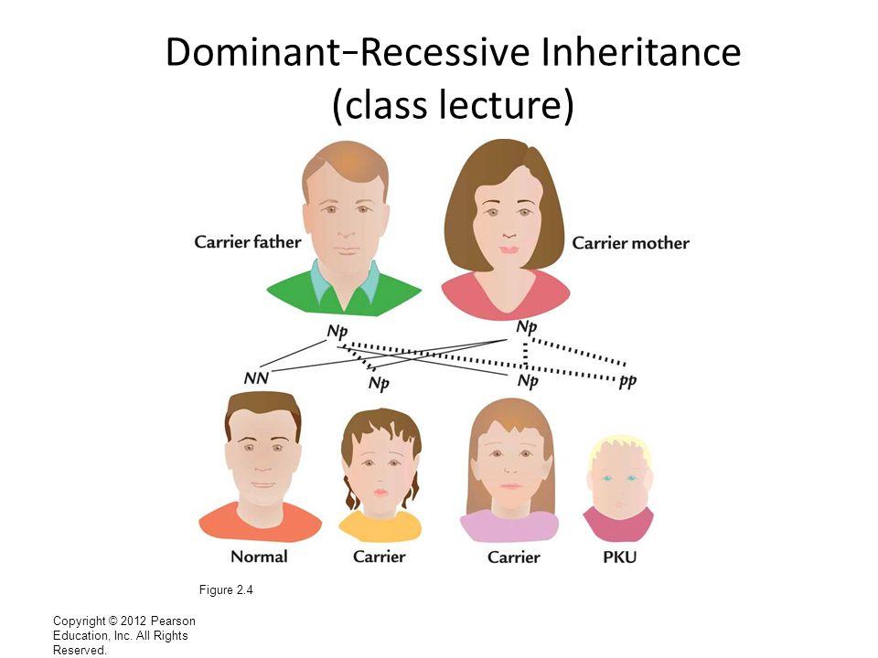 Dominant–Recessive Inheritance (class lecture)