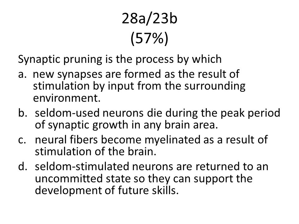 28a/23b (57%) Synaptic pruning is the process by which