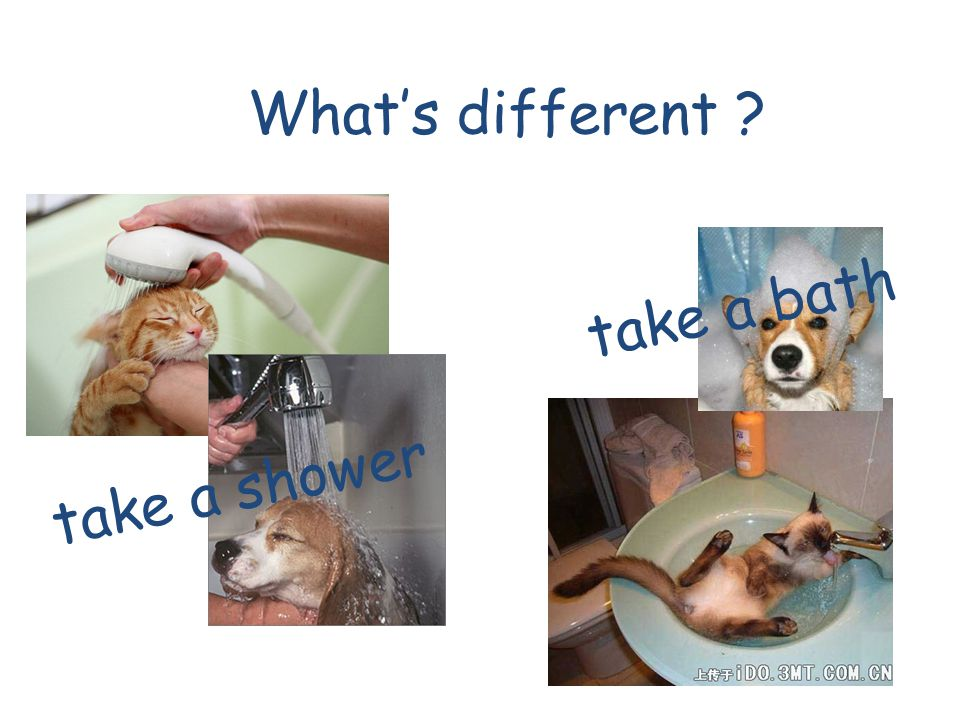 What's different take a bath take a shower