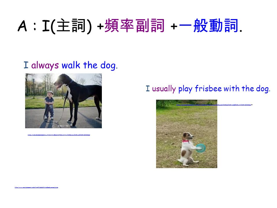 A : I(主詞) +頻率副詞 +一般動詞. I always walk the dog.