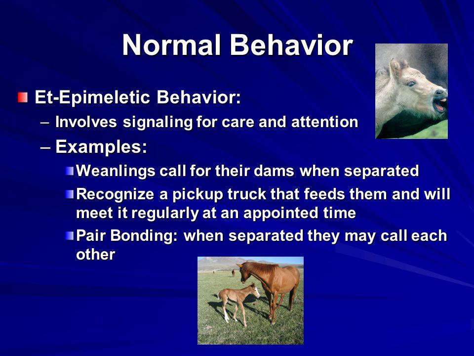 Normal Behavior Et-Epimeletic Behavior: Examples: