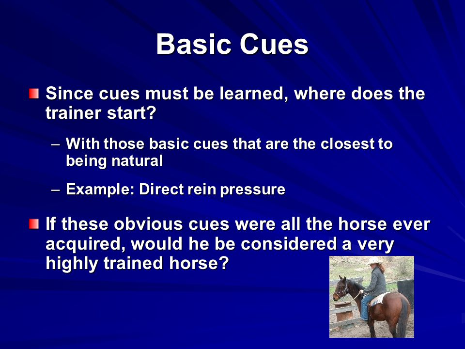 Basic Cues Since cues must be learned, where does the trainer start