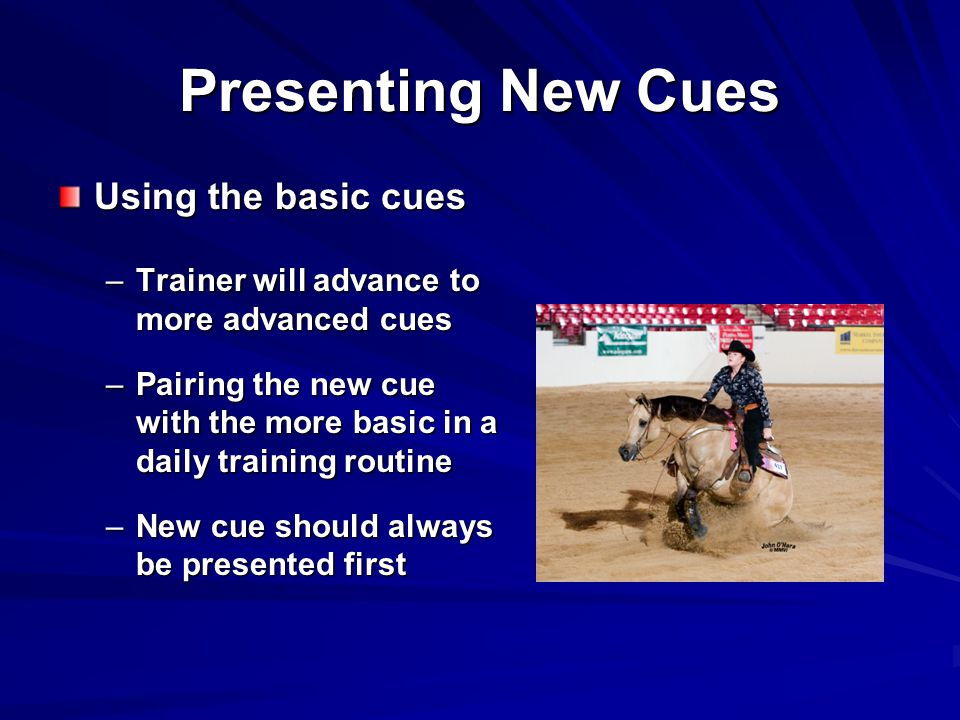 Presenting New Cues Using the basic cues