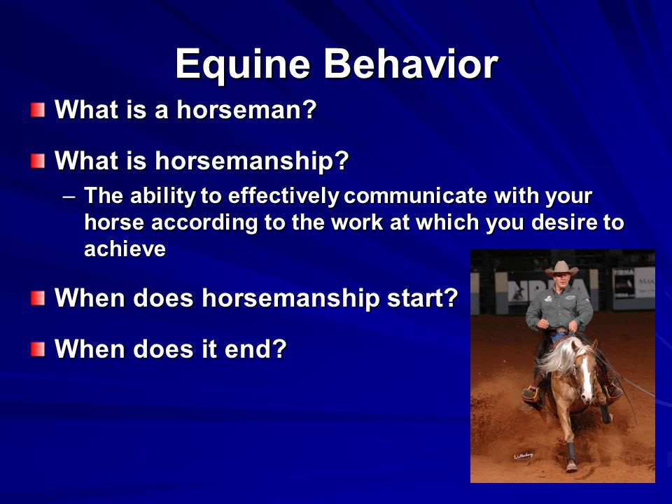 Equine Behavior What is a horseman What is horsemanship