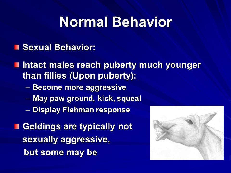 Normal Behavior Sexual Behavior: