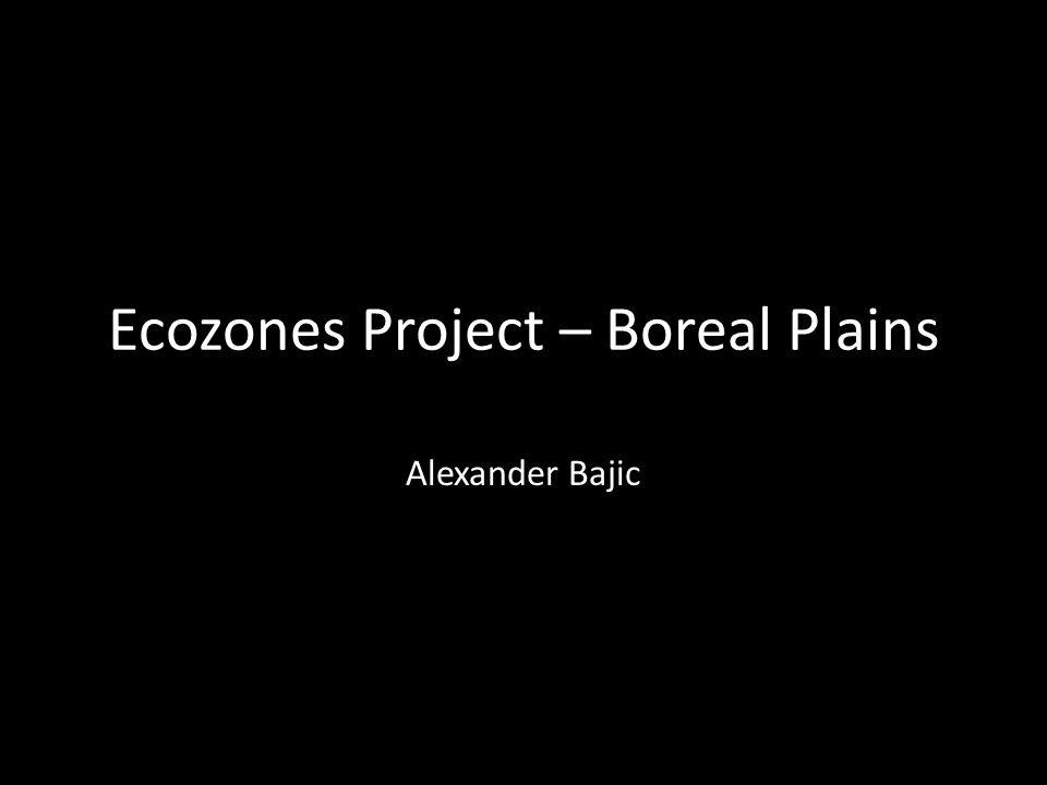 Ecozones Project – Boreal Plains