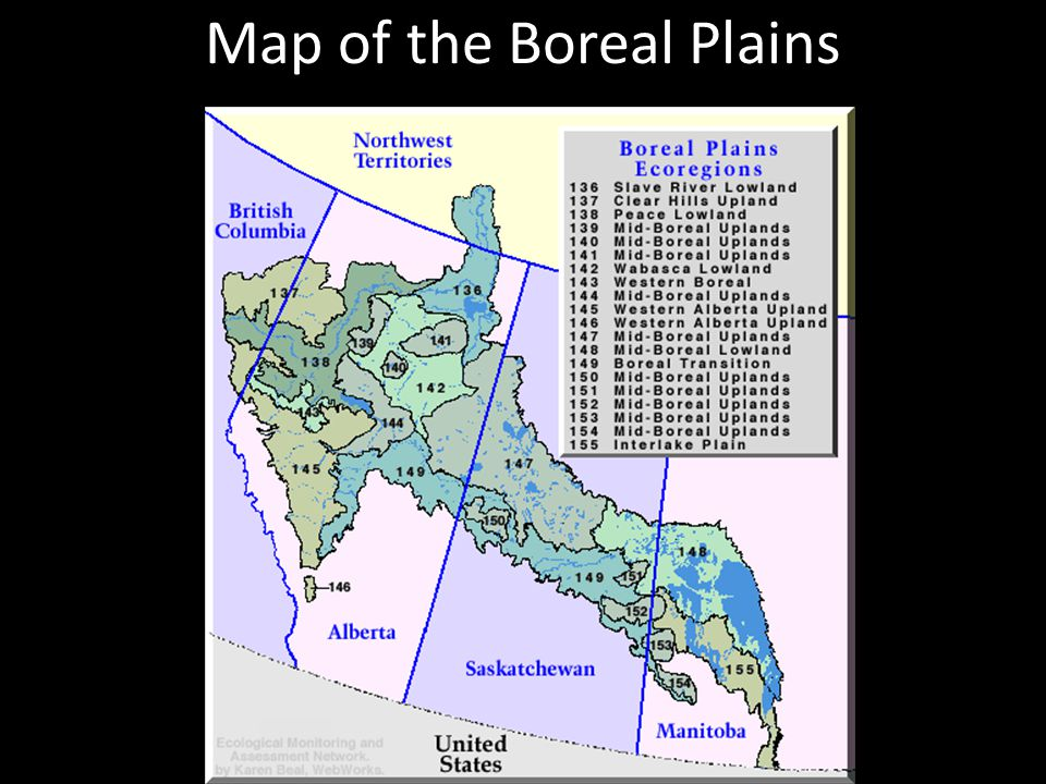 Map of the Boreal Plains