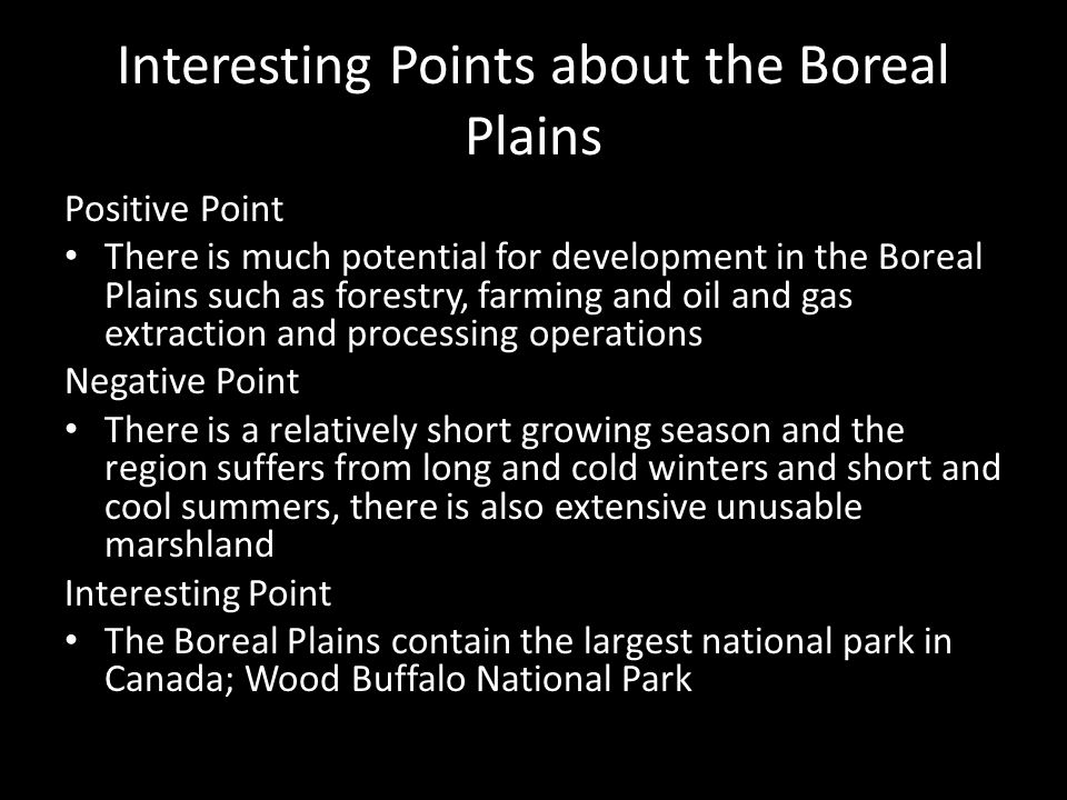 Interesting Points about the Boreal Plains