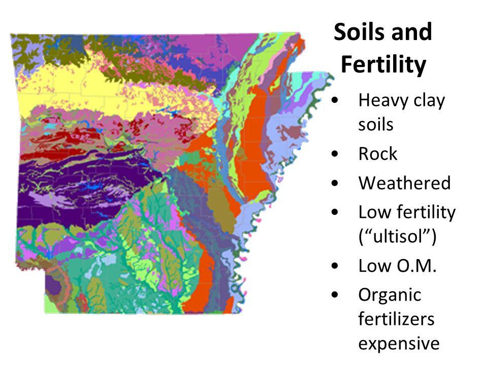 Soils and Fertility Heavy clay soils Rock Weathered
