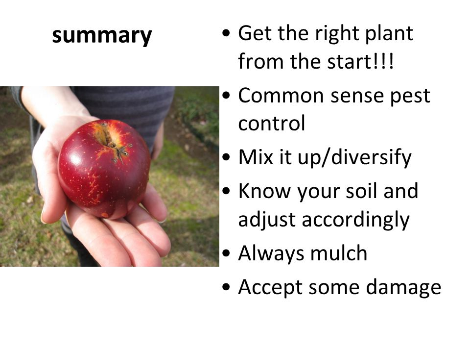 summary Get the right plant from the start!!!