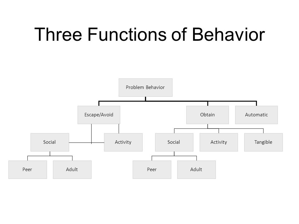 Three Functions of Behavior
