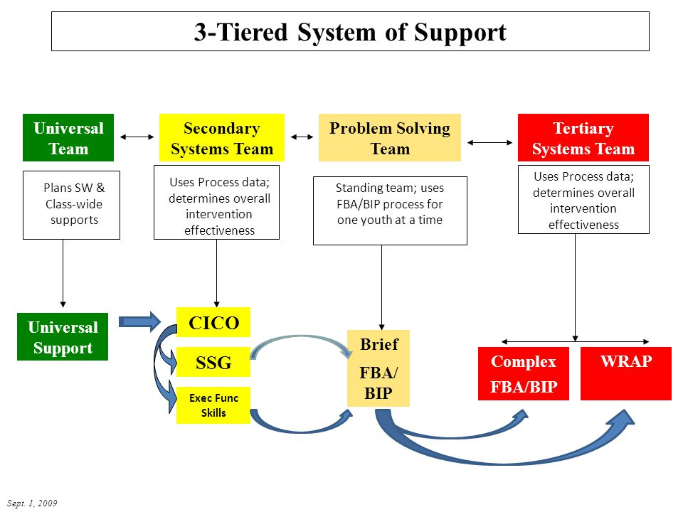 3-Tiered System of Support Secondary Systems Team