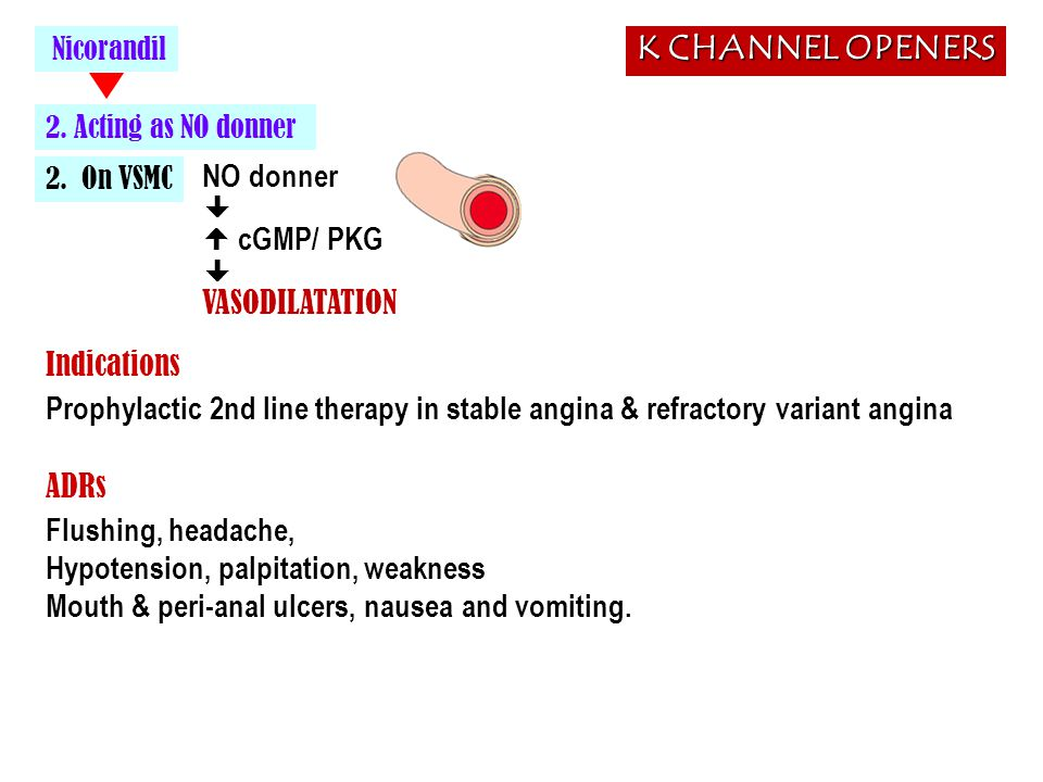 K CHANNEL OPENERS NO donner   cGMP/ PKG VASODILATATION Indications