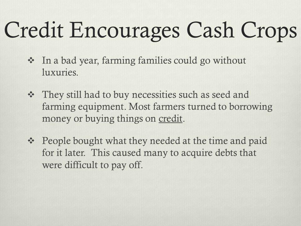 Credit Encourages Cash Crops