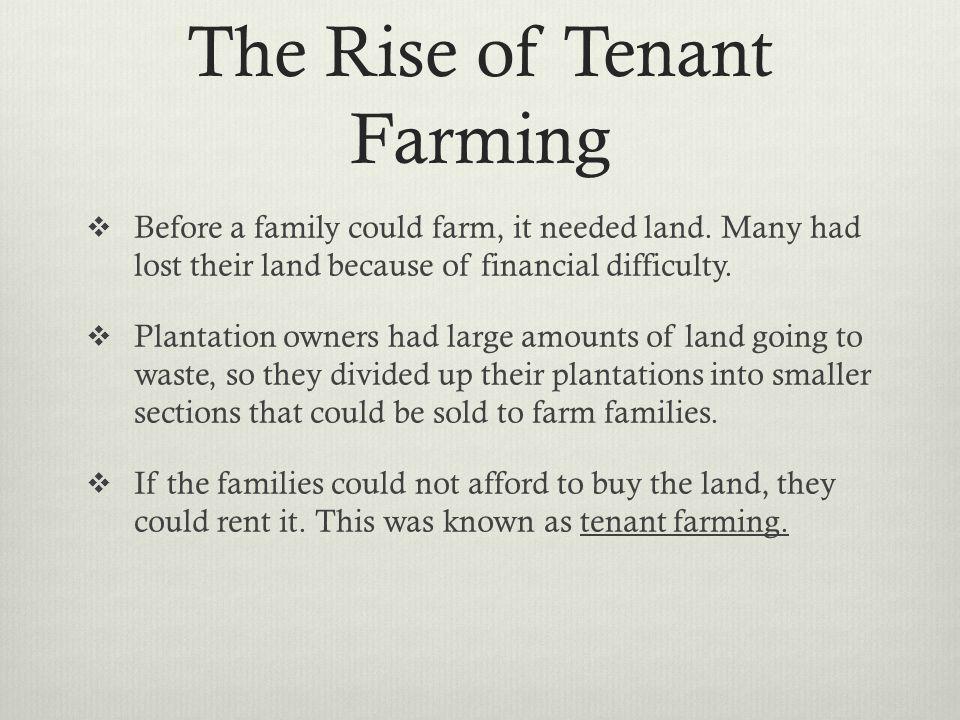 The Rise of Tenant Farming