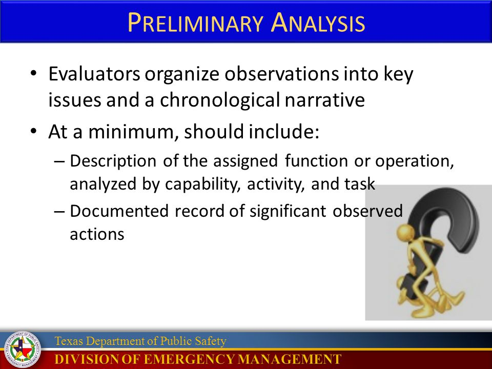 Preliminary Analysis Evaluators organize observations into key issues and a chronological narrative.